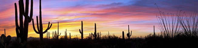 Arizona Specailty Block Grant applications are now available.