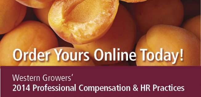 Order Your WG 2014 Professional Compensation and HR Practices Survey Online Toda
