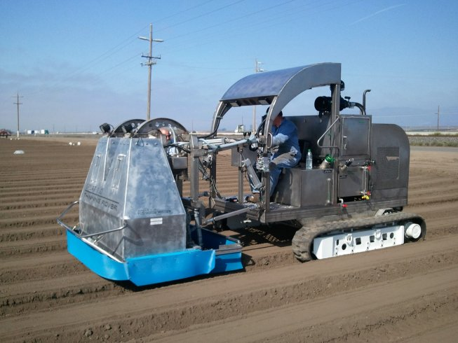 Mechanization continues to march on in vegetable industry.