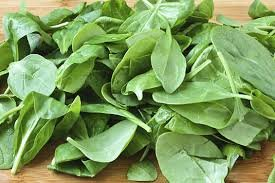 Changes to Leafy Greens Marketing Agreements being explored.