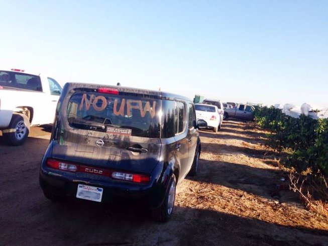 """Picture of Car with """"No UFW"""" Sign"""