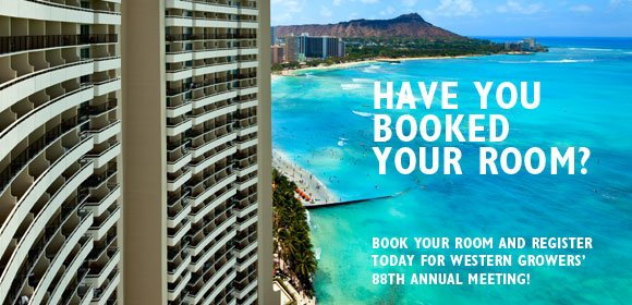 WG will hold its Annual Meeting in Waikiki thius year.