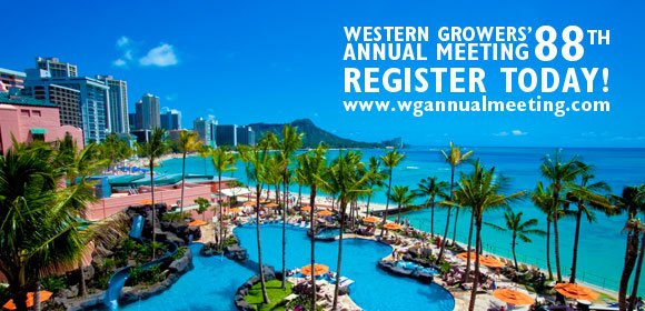Waikiki will serve as the bacdrop for this year's WG Annual Meeting.