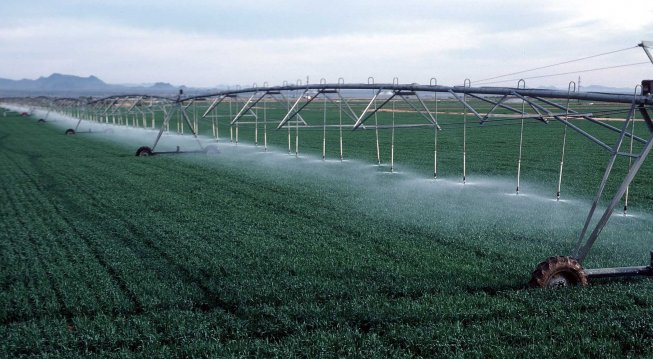 Lunch & Learn Webinar -- The Intersection of Water Efficiency and Nitrogen Use