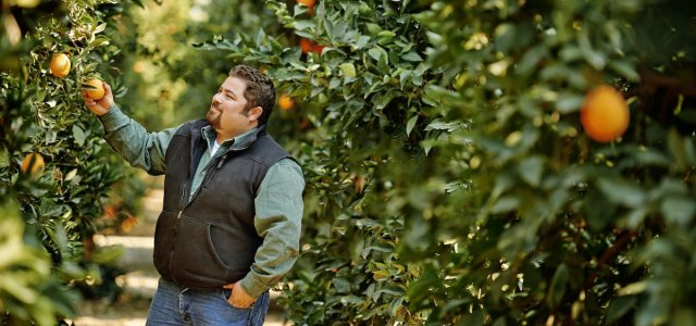 Fruit Growers Supply is owned by a co-op of growers.