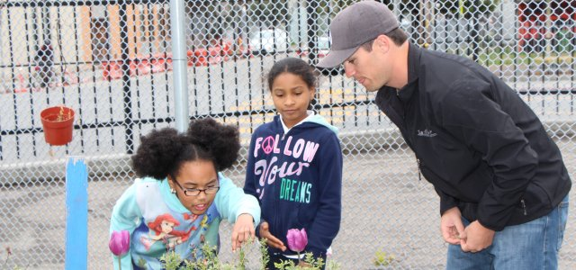 School gardens donated by WG Foundation in Oakland