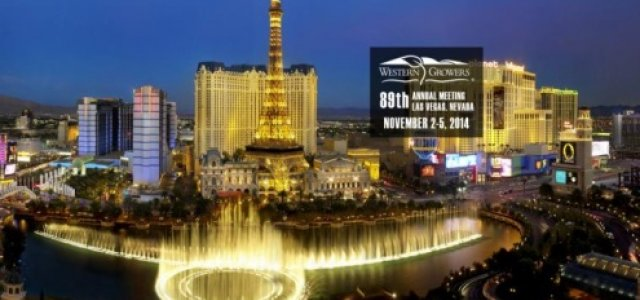 Las Vegas Is Ready for You -- Are You Ready for Las Vegas?
