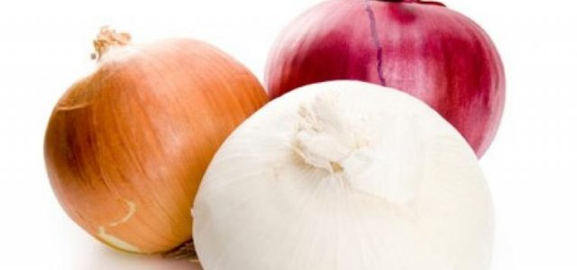 National Onion Convention to Hold Summer Convention in Ventura