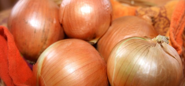 Lacking Reciprocity Canadian Officials Change U.S. Onion Inspection Requirements
