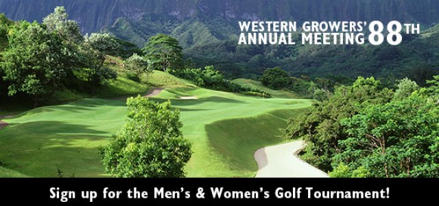Annual Meeting Golf Tournament