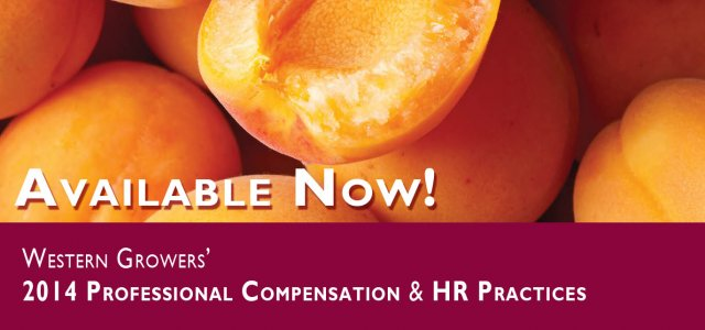 Plan for 2015: Order the 2014 WG Professional Compensation & HR Practices Survey